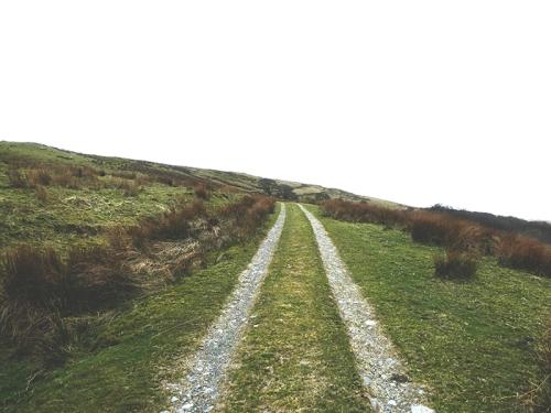 track to warbla