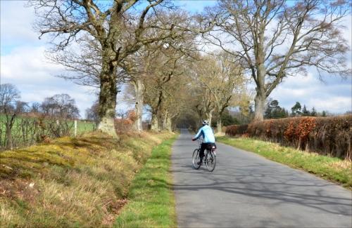 hawick ride near Minto GC