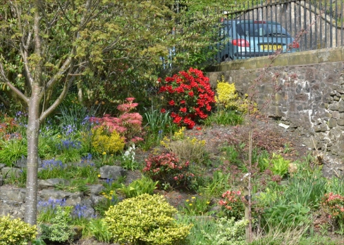 clinthead gardens