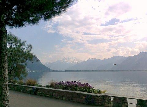 Les Dents de Midi from Montreux