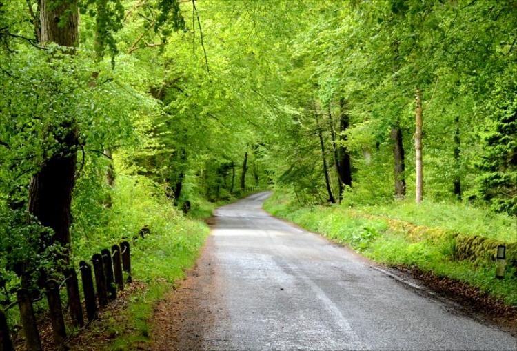 Penton road