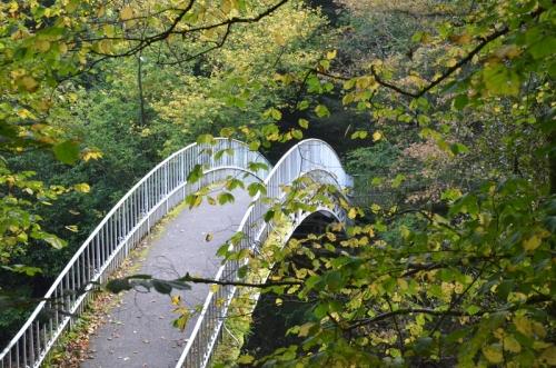 The duchess bridge