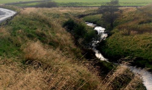 a stream