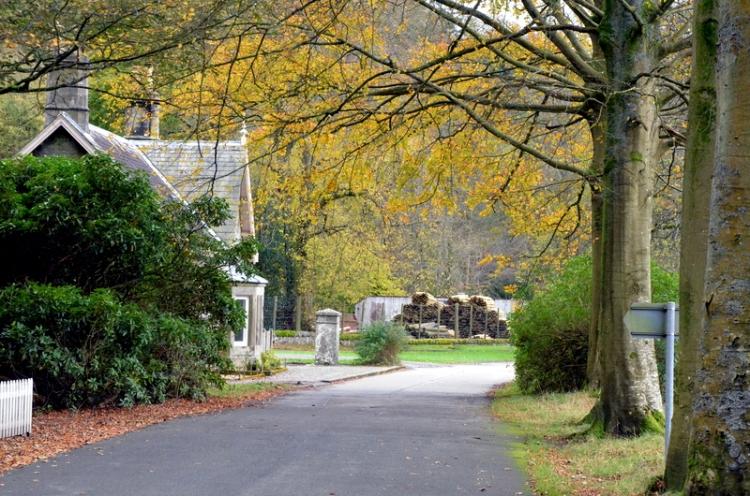The Lodge gates