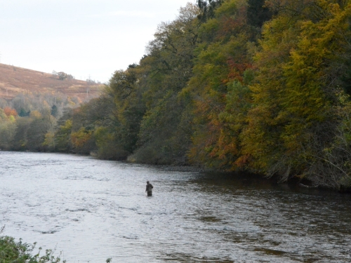 Fisherman in Esk
