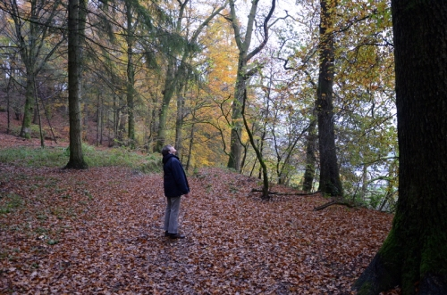 Easton's Walk