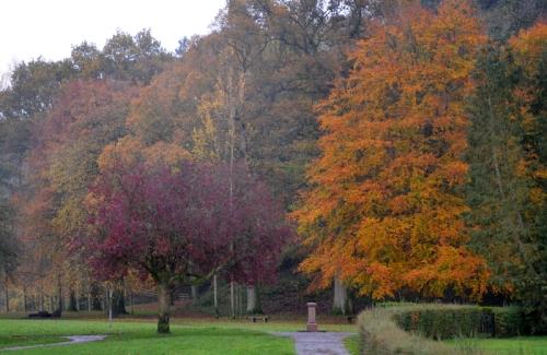 Buccleuch Park