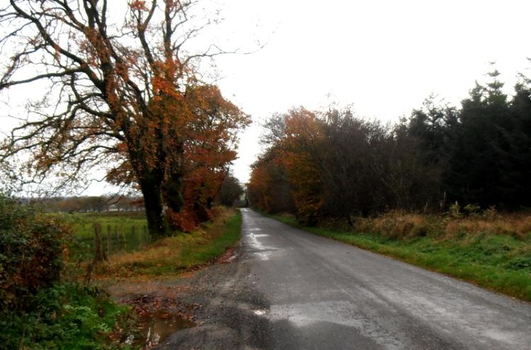 near Waterbeck