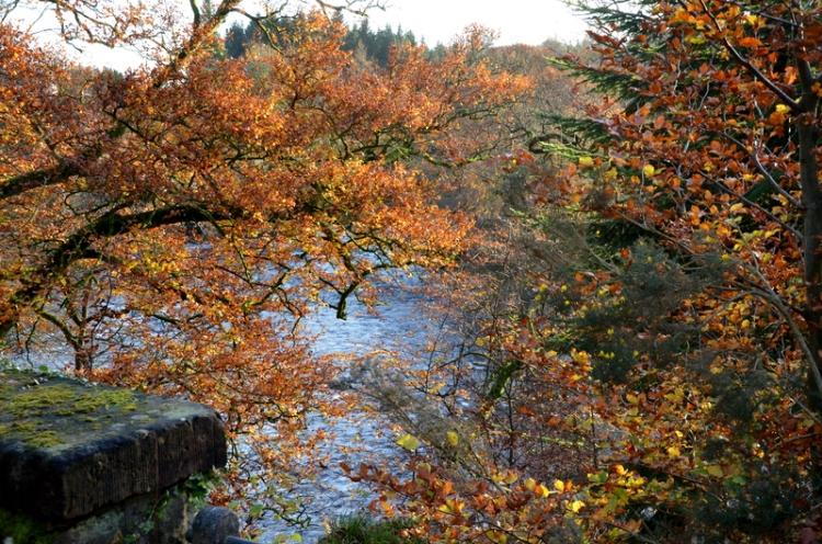 The River Esk at Byreburn