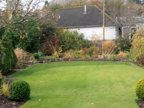 Two tone lawn