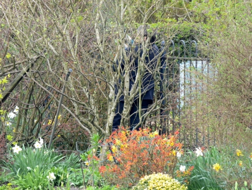 mysterious gardening