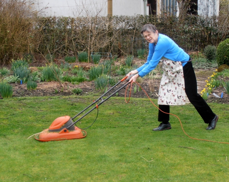 Mrs Tootlepedal mowing