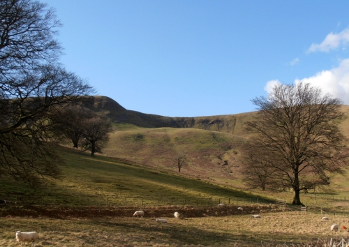 Hill at Fiddleton