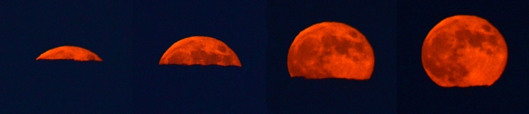 moon emerging