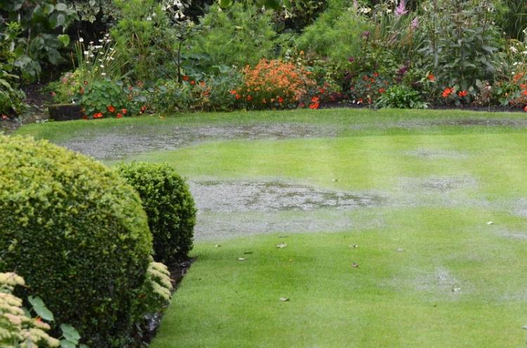 lawn under water