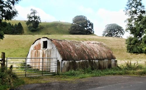 tin shed