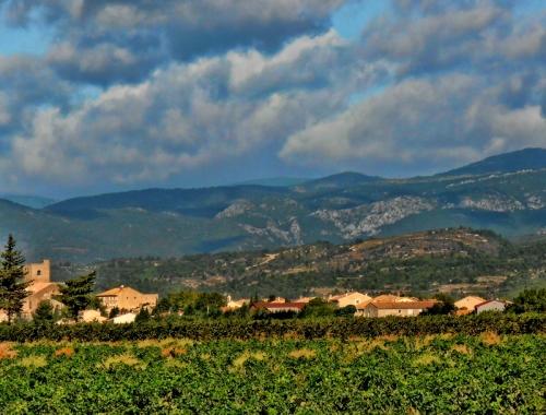 Hills of Languedoc
