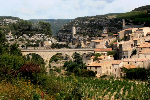 Minerve bridge