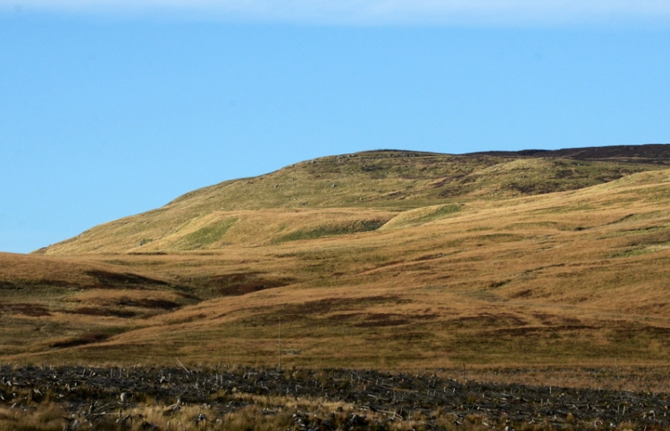 Looking ahead to Arkleton hill