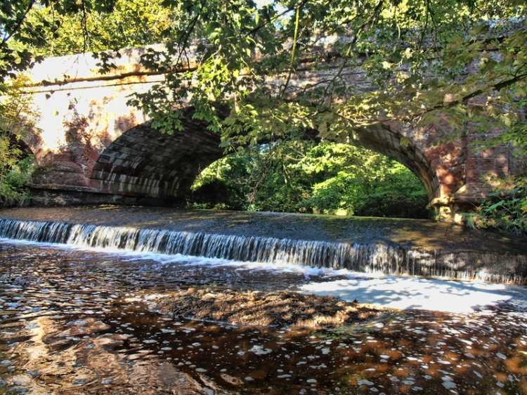 Cam Beck Bridge