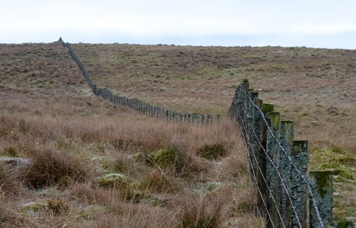 Warbla fence
