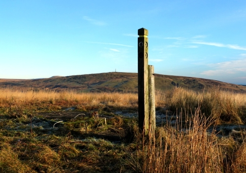 Langholm Walks guidepost