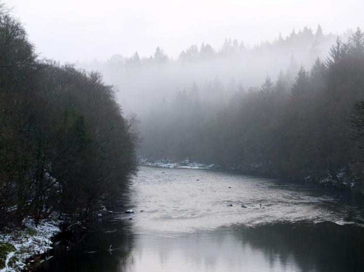 mist on the Esk