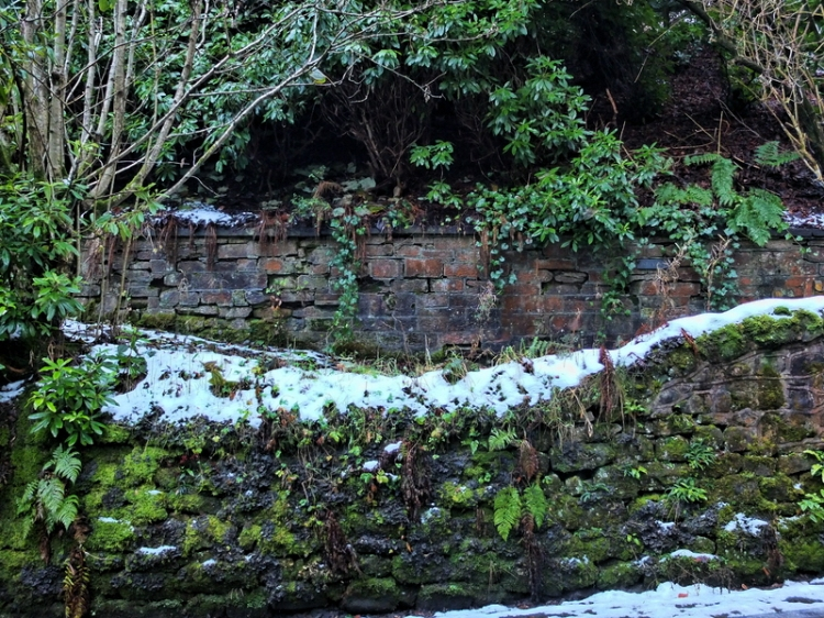 Hallpath walls