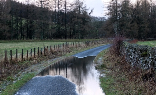 road puddle at Georgefield