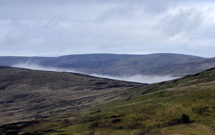 Looking past Whita, I could see the mist in the Tarras valley beyond.