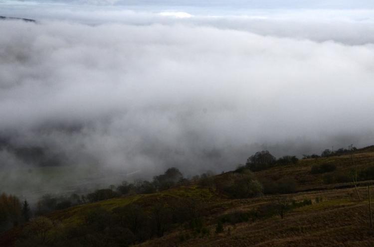 Whita in the mist