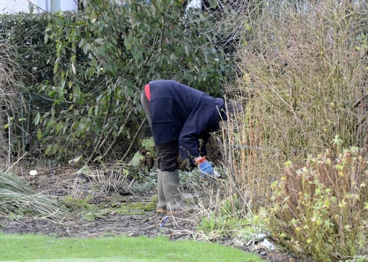 Mrs toot gardening