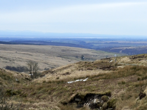 view from the moor