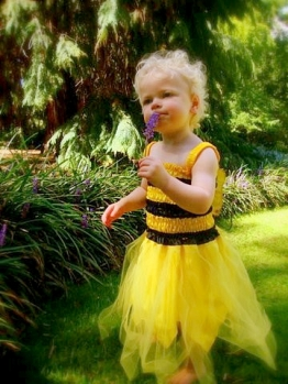Maisie as a bee