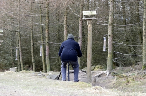 This is Sandy setting up his woodpecker scaring equipment.  It works very well.