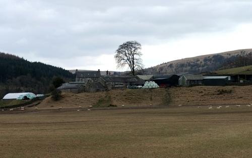 Milnholm Farm