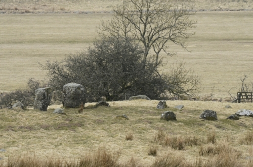 The Loupin Stanes