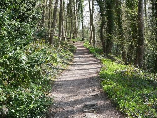 The path at Matlock Baths