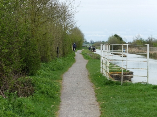 Mrs Tootlepedal on the tow path