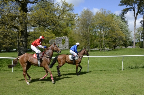 horse racing on the Castleholm