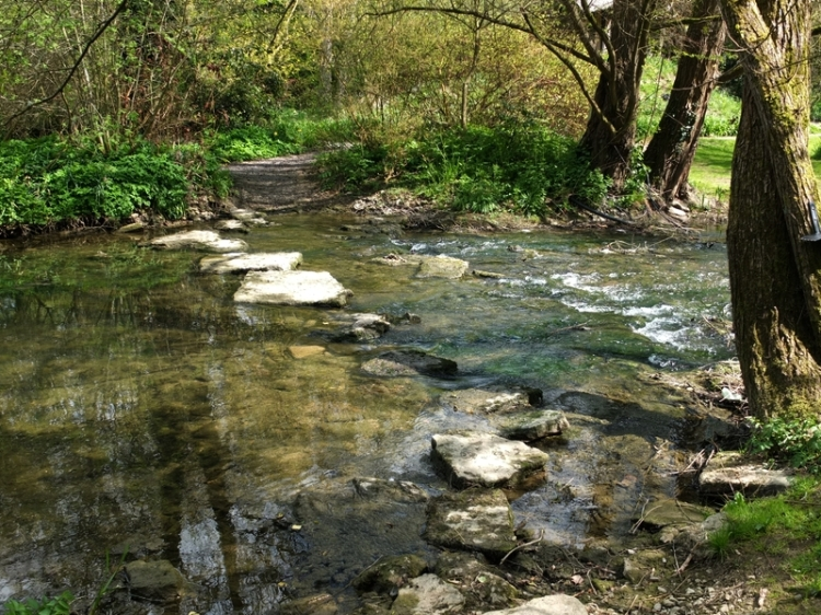 river stepping stones