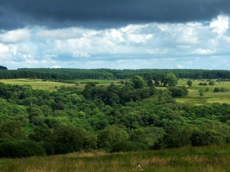 Drak clouds at Moorland feeder