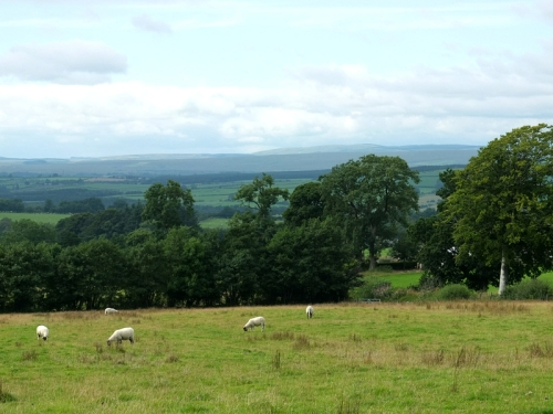 View from the  road to Bewcastle