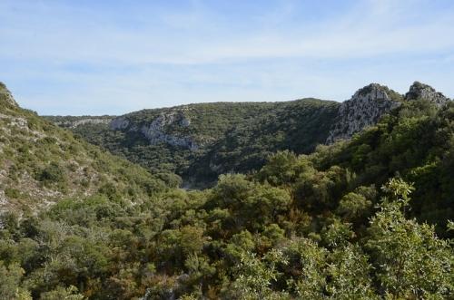 Gard gorge