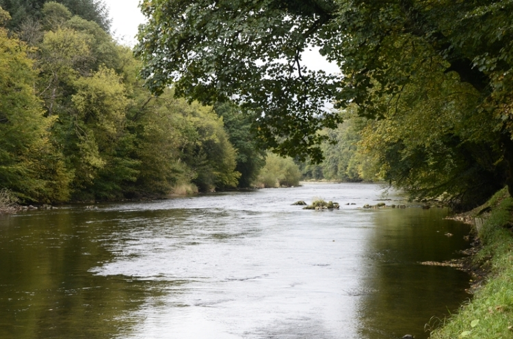 The Esk