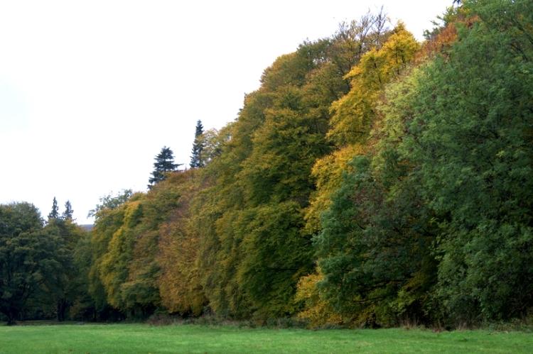 Castleholm