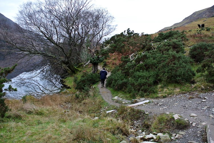 Lakeside path, Buttermere