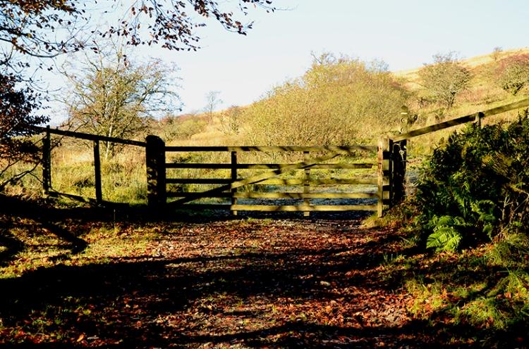 gate onto meikleholm
