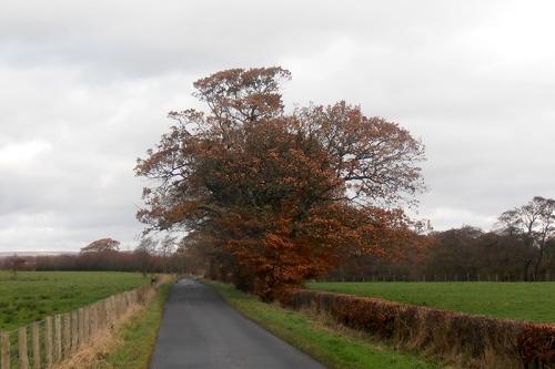 Near Gretna