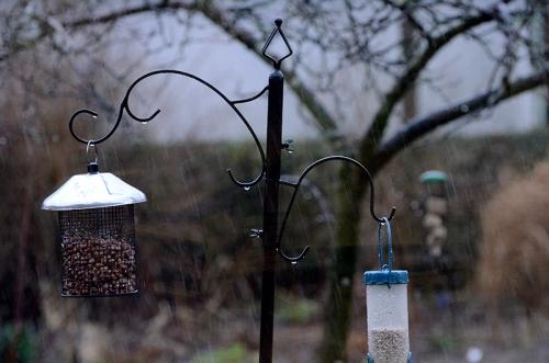 wet feeder